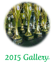 2015 Gallery