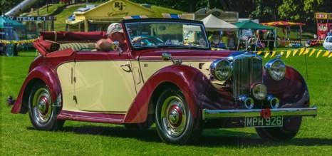 FDLCVS-141-GC-2019-1948 ALVIS