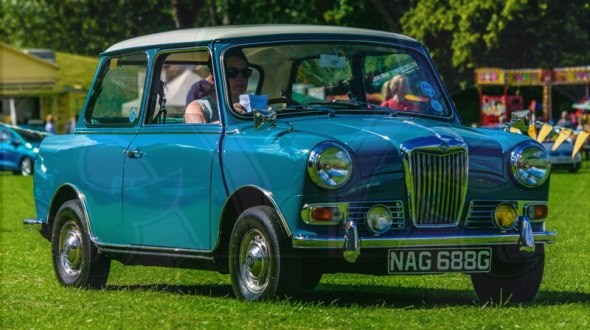 FDLCVS-198-GC-2019-1969 RILEY ELF