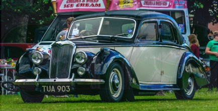 FDLCVS-341-GC-2019-1955 RILEY